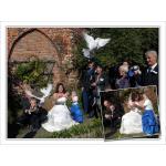 12c-witte-duiven.jpg