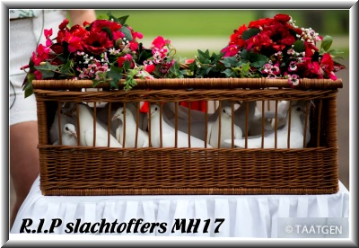 R.I.P slachtoffers MH17